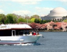 DC Cruises