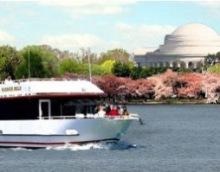DC Cruises